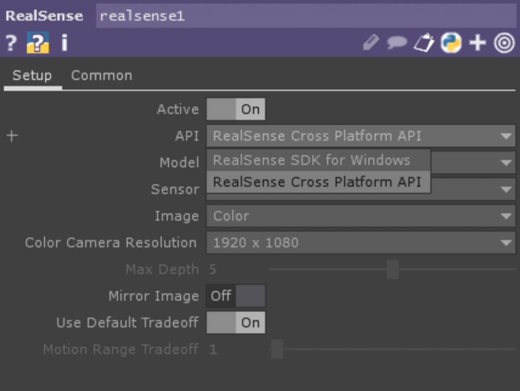 RealSense TOP API
